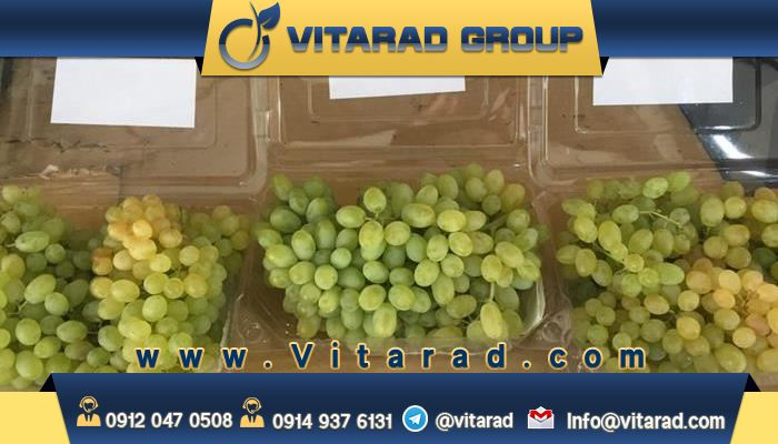 The quality of Iranian grapes