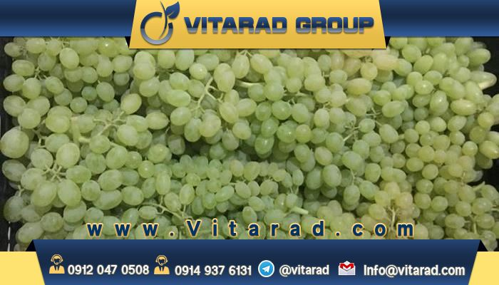 The foreign buyers of Iranian grapes