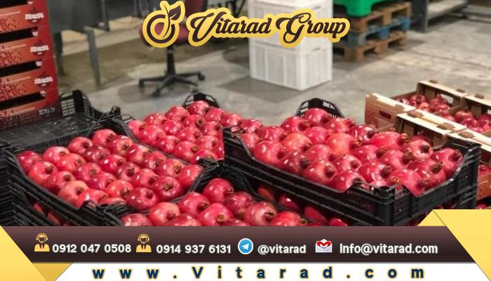 Pomegranate production in Iranian cities