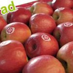 apples from Iran