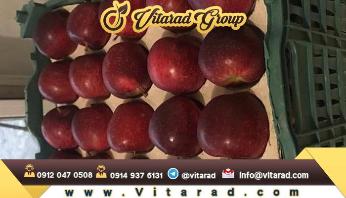 The red apples of Iran are very famous