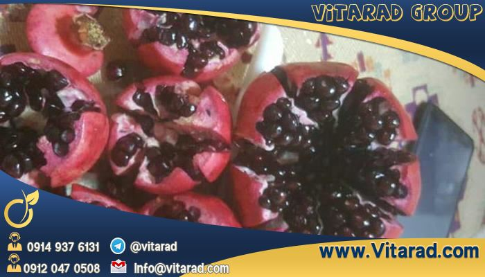 Pomegranate exporters nationwide